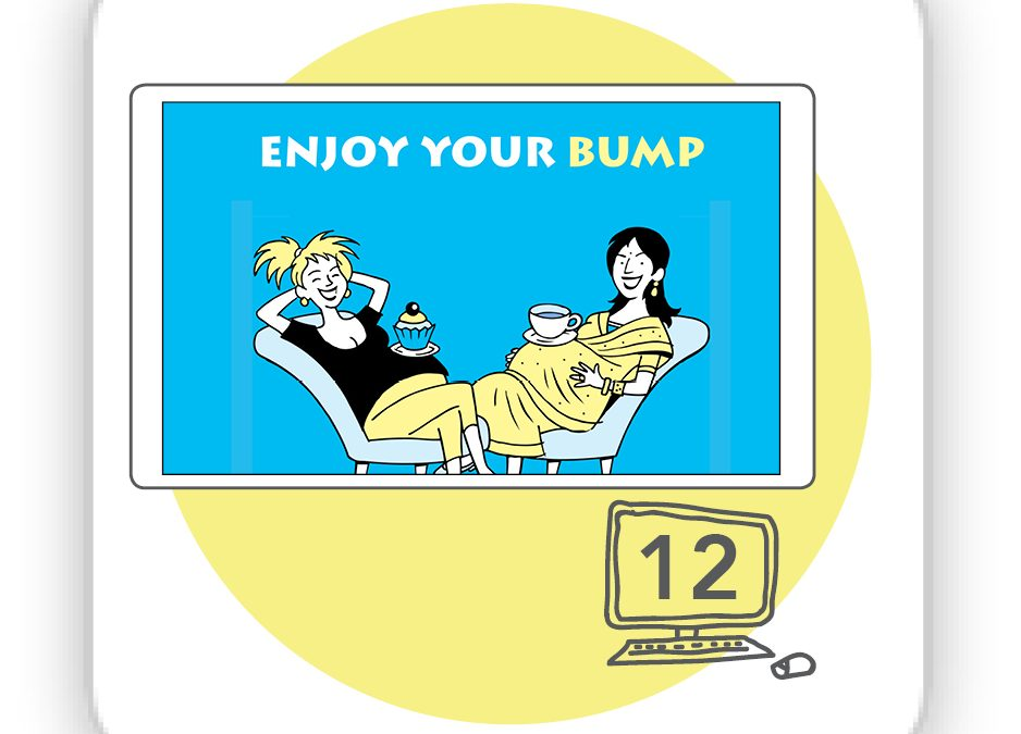 Enjoy Your Bump Online (12 month non-commercial licence)